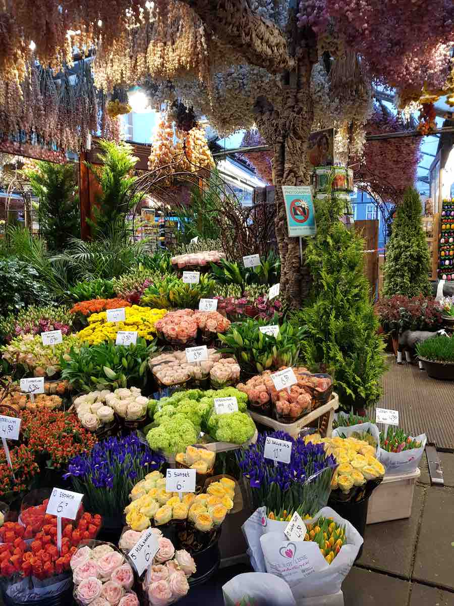 Blumenmarkt in Amsterdam – Foto: Lena Ziehres