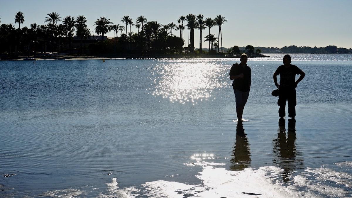 Geht doch! Ende Dezember mit den Füßen im Wasser der Bucht von Alcudia, Mallorca – Foto: Beate Ziehres