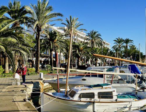 Alcúdia auf Mallorca im Winter: das Wetter, 5 Sehenswürdigkeiten und 18 Tipps