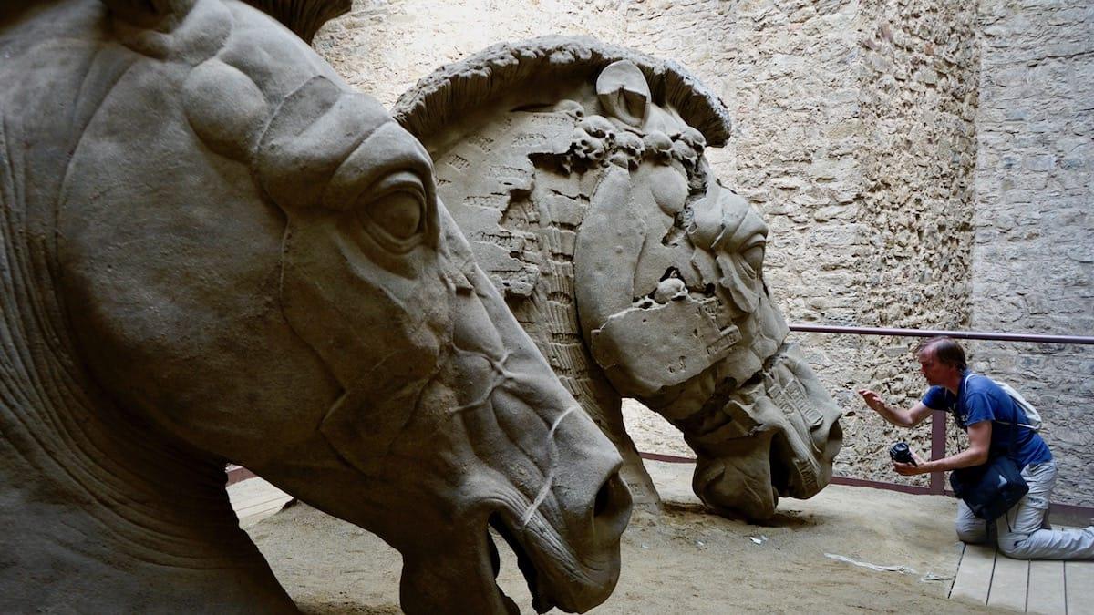 Tierisch: Max, der Pferdeflüsterer, in Aktion. Die Pferdeköpfe sind Bestandteil des Lapidariums von Gustavo Aceves und wurden in der Festung der Medici in Arezzo, Italien, Toskana gezeigt. – Foto: Beate Ziehres