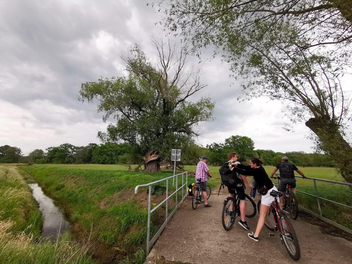 Familienausflug auf dem Oderradweg zwischen Lebus und Frankfurt. Foto: Beate Ziehres / Reiselust-Mag