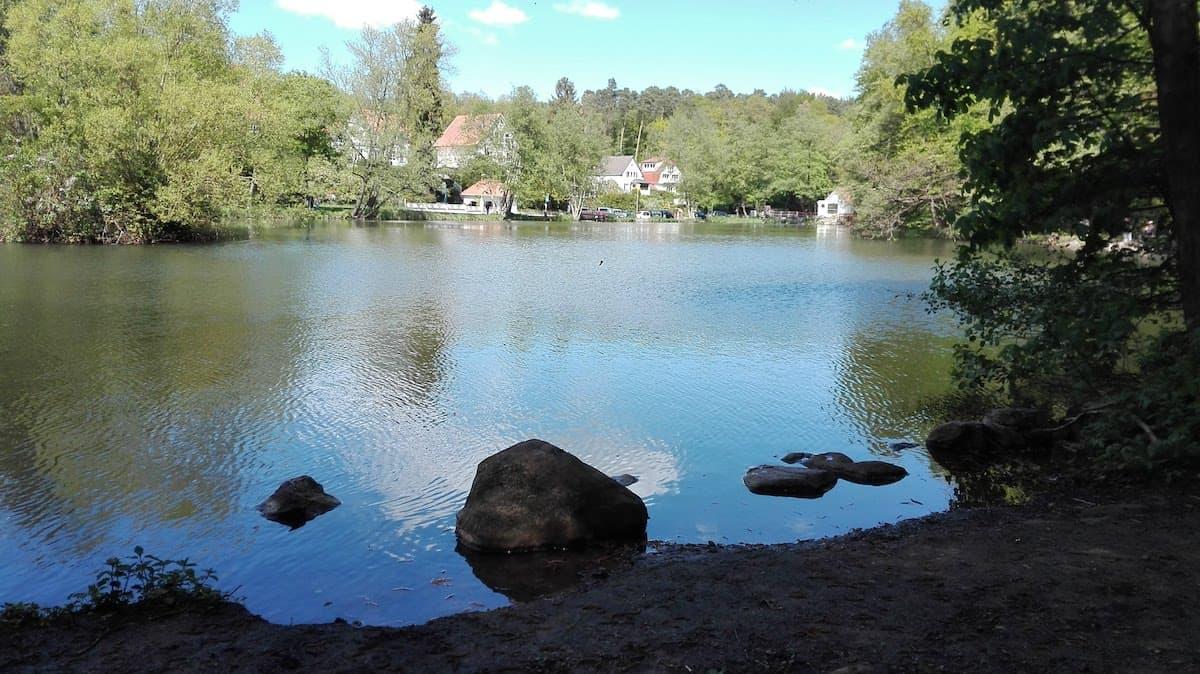 Clarabadteich im Brunnental. Foto: Beate Ziehres