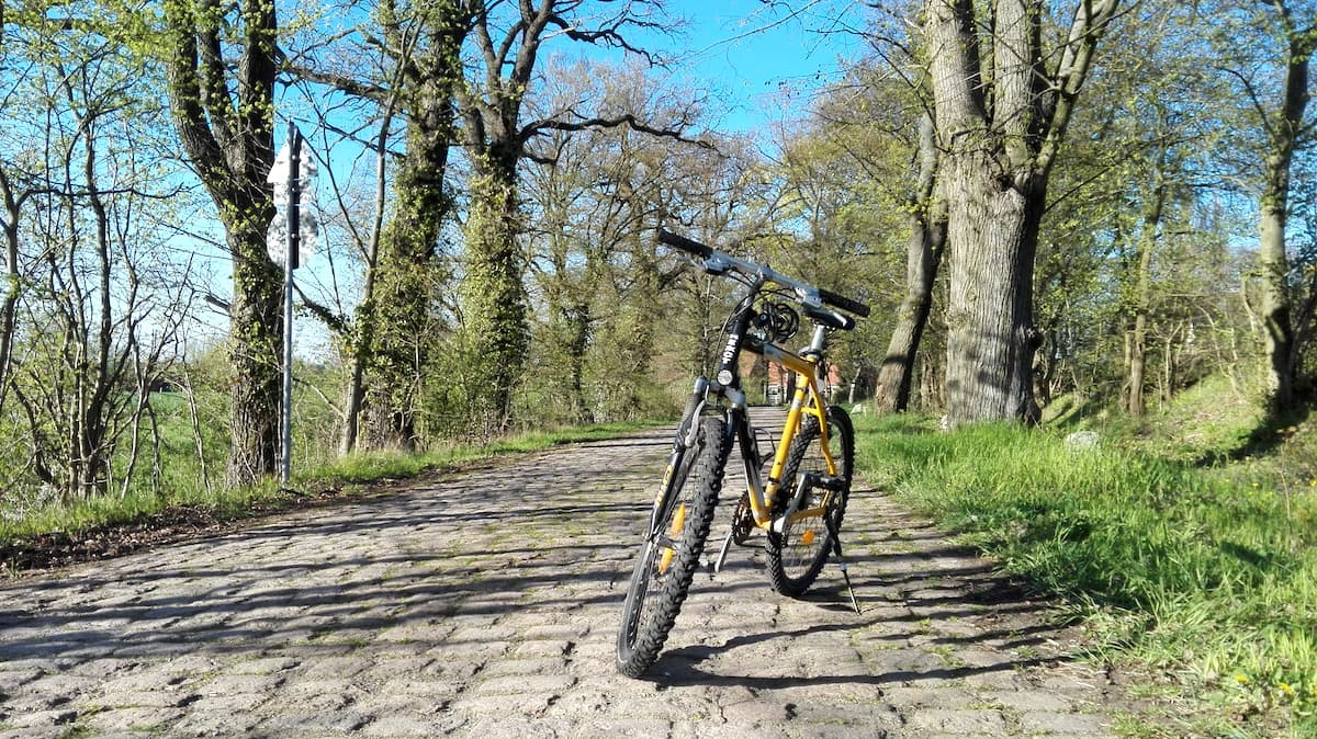 Radtour im Lappwald. Foto: Beate Ziehres