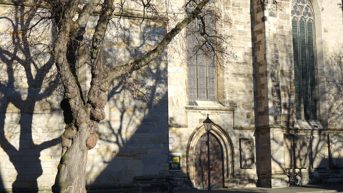 St. Stephani-Kirche in Helmstedt. Foto: Beate Ziehres