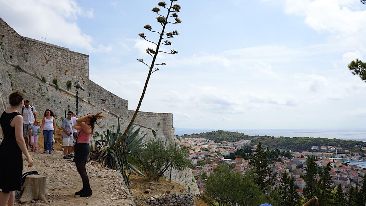 Hvar, Festung Španjola. Foto: Beate Ziehres
