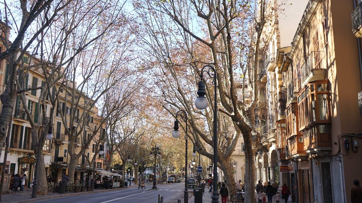 Palma de Mallorca, Placa del Mercat im Winter. Foto: Beate Ziehres