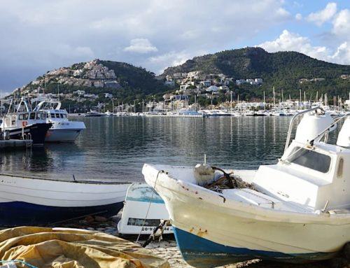 Mallorca im Winter: 9 Tipps für einen entspannten Urlaub