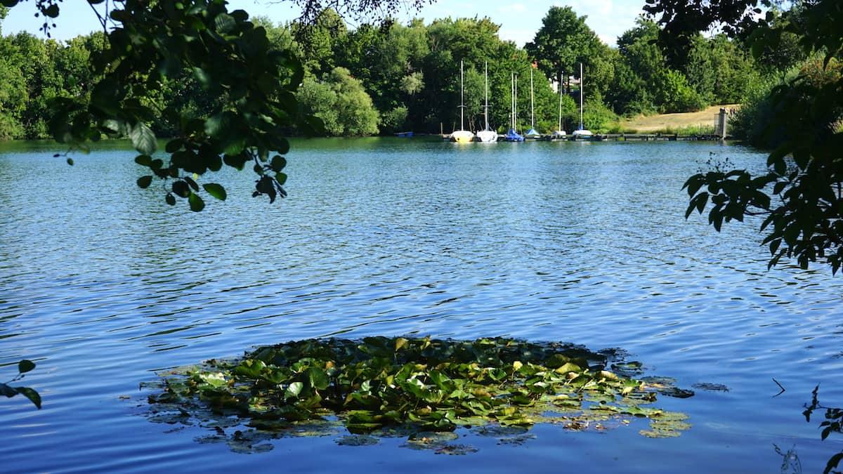 Niedersachsen: Vienenburger See. Foto: Beate Ziehres