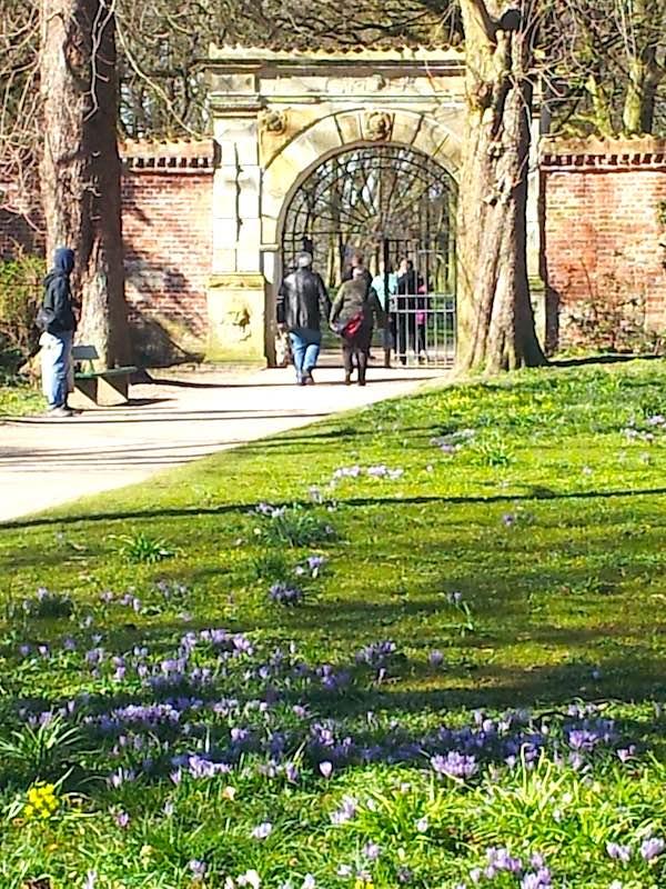 Krokusse schon vor dem Tor zum Park des Schlosses vor Husum – Foto: Beate Ziehres