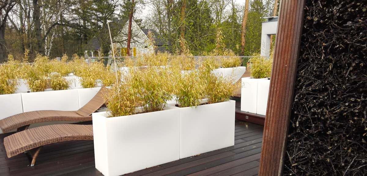 Wellness in der Bad Saarow Therme: das Gradierwerk auf der Dachterrasse der Panoramasauna – Foto: Beate Ziehres