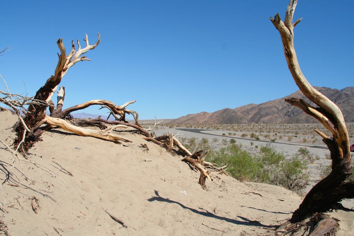 Fast schon surrealistisch: Szene an den Mesquite Flat Sand Dunes, Death Valley – Foto: Beate Ziehres