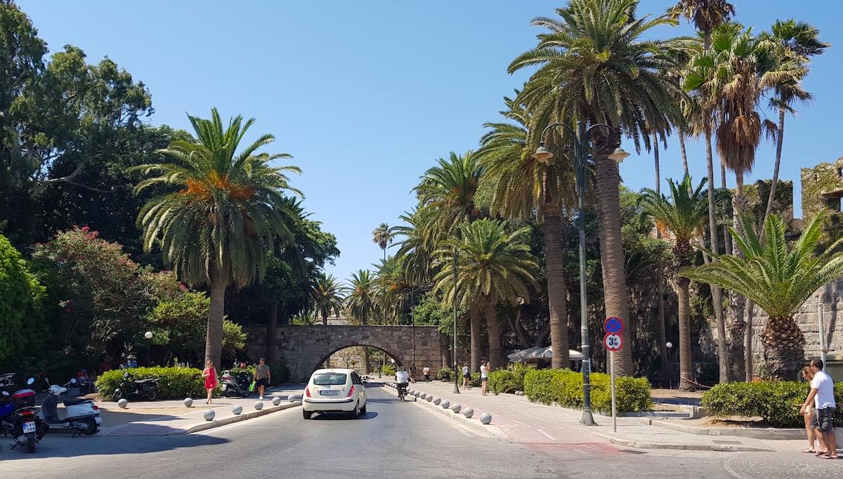 Der Palmenboulevard in Kos Stadt – Foto: Lena Ziehres