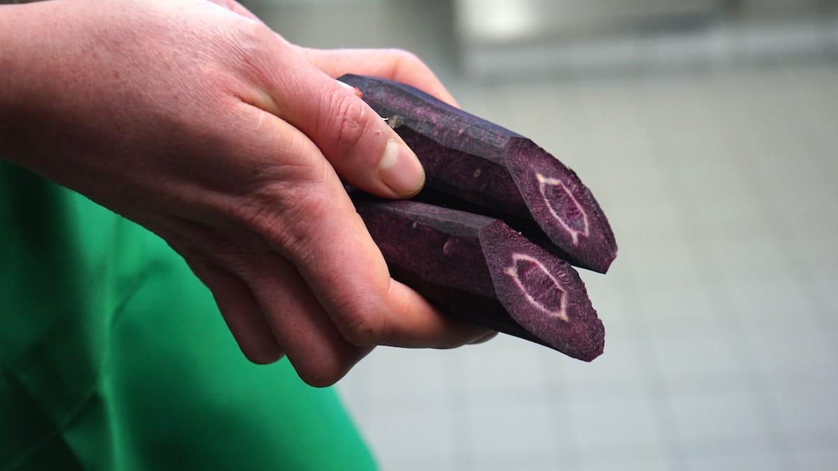 Die Urkarotten, geschält und durchgeschnitten – Foto: Beate Ziehres