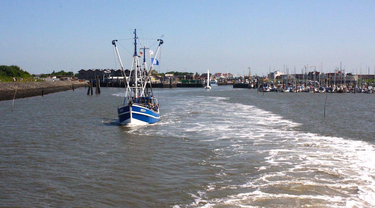 Reiselust-Mag Schiff im Hafen von Langeoog – Foto: Lena Ziehres