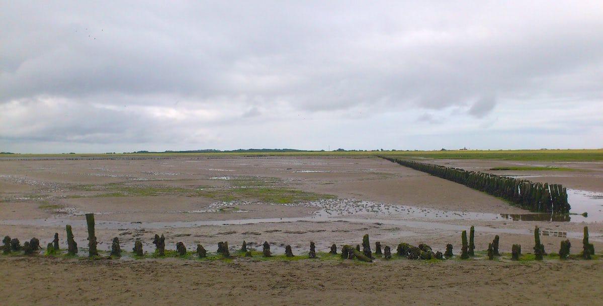 Reiselust-Mag: Am Wattenmeer von Langeoog – Foto: Lena Ziehres