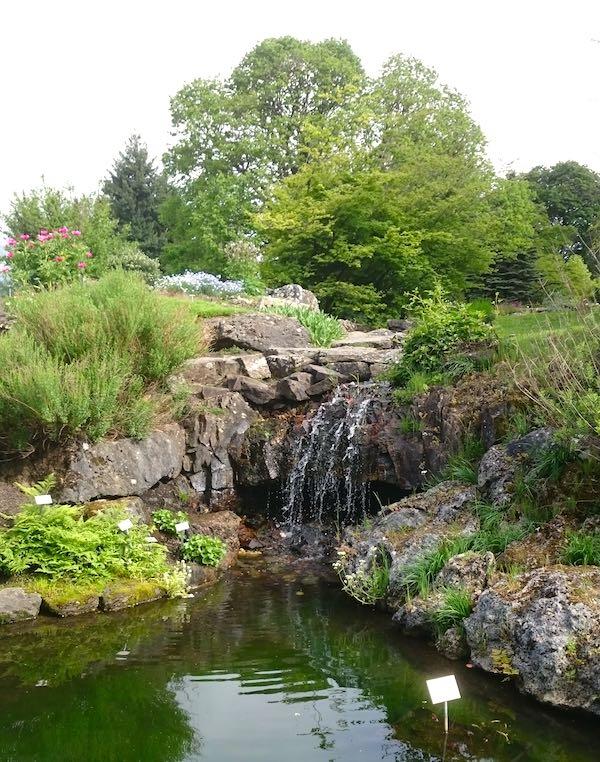 Der Wasserfall in Oslos botanischem Garten – Foto: Lena Ziehres