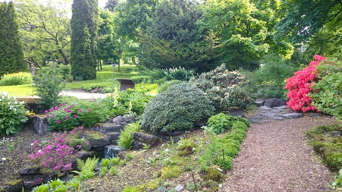 Auch der botanische Garten zählt zu den kostenlosen Sehenswürdigkeiten Oslos – Foto: Lena Ziehres