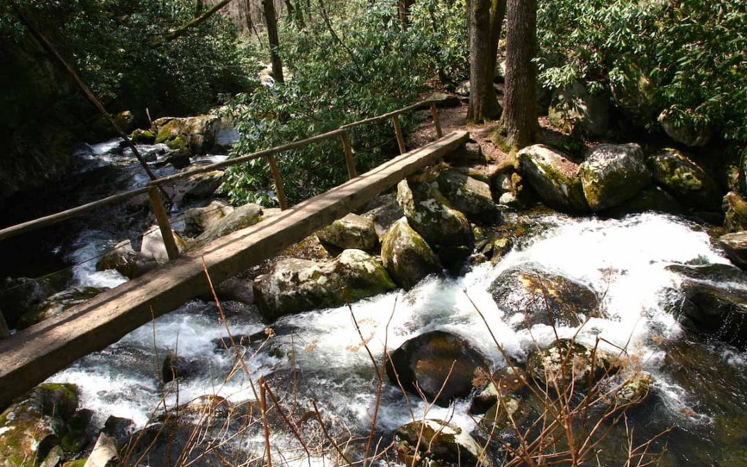 13 Bilder aus dem Great Smoky Mountains National Park