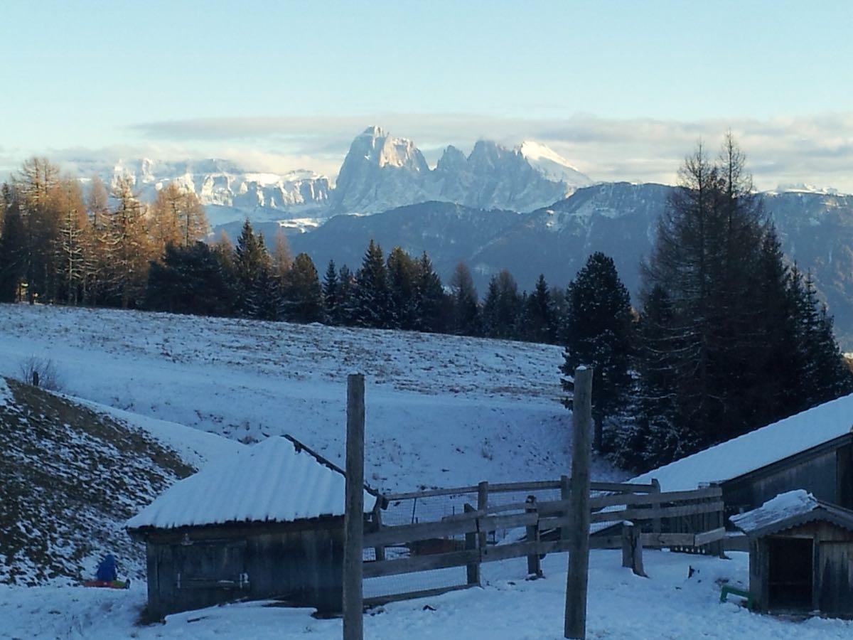 Winterliches Panorama von der Gasserhütte aus: die Dolomiten in der Nachmittagssonne. Südtirol – Foto: Beate Ziehres