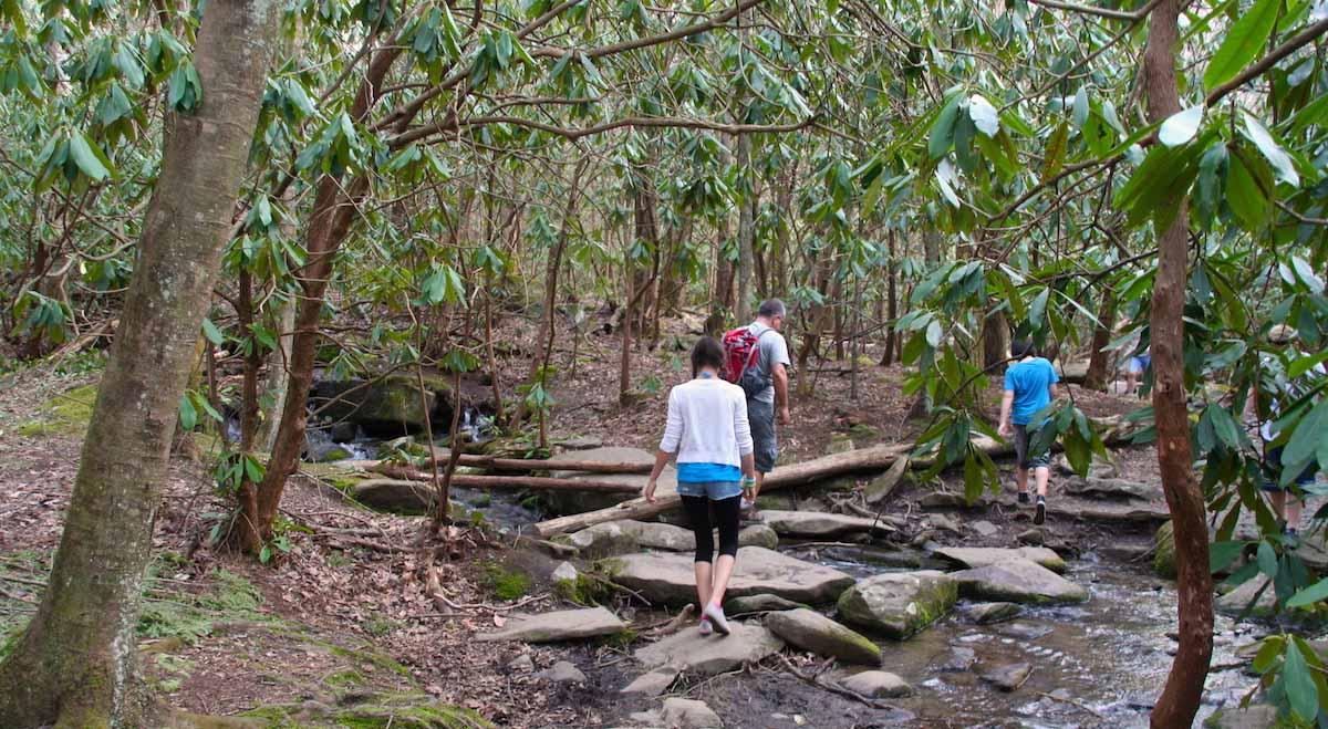 Zum Warmlaufen bei Gatlinburg, Tennessee: der Noah Bud Ogle Nature Trail – Foto: Beate Ziehres