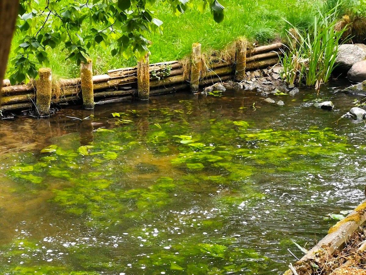 Mühlenbach Ragower Mühle. Foto: Beate Ziehres