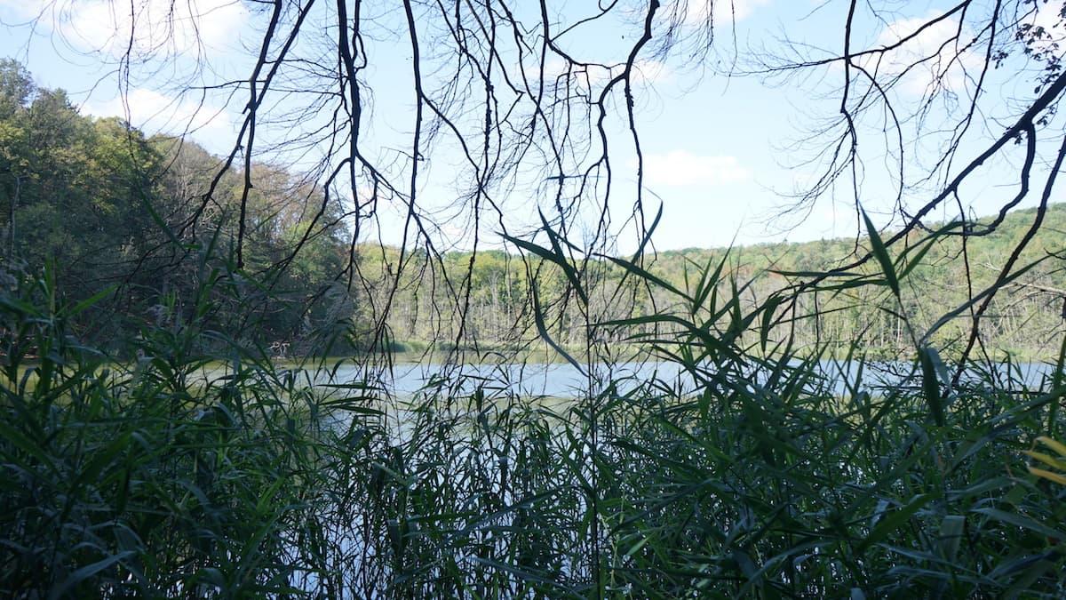 Seenland Oder-Spree, Märkische Schweiz, Kleiner Tornowsee. Foto: Beate Ziehres