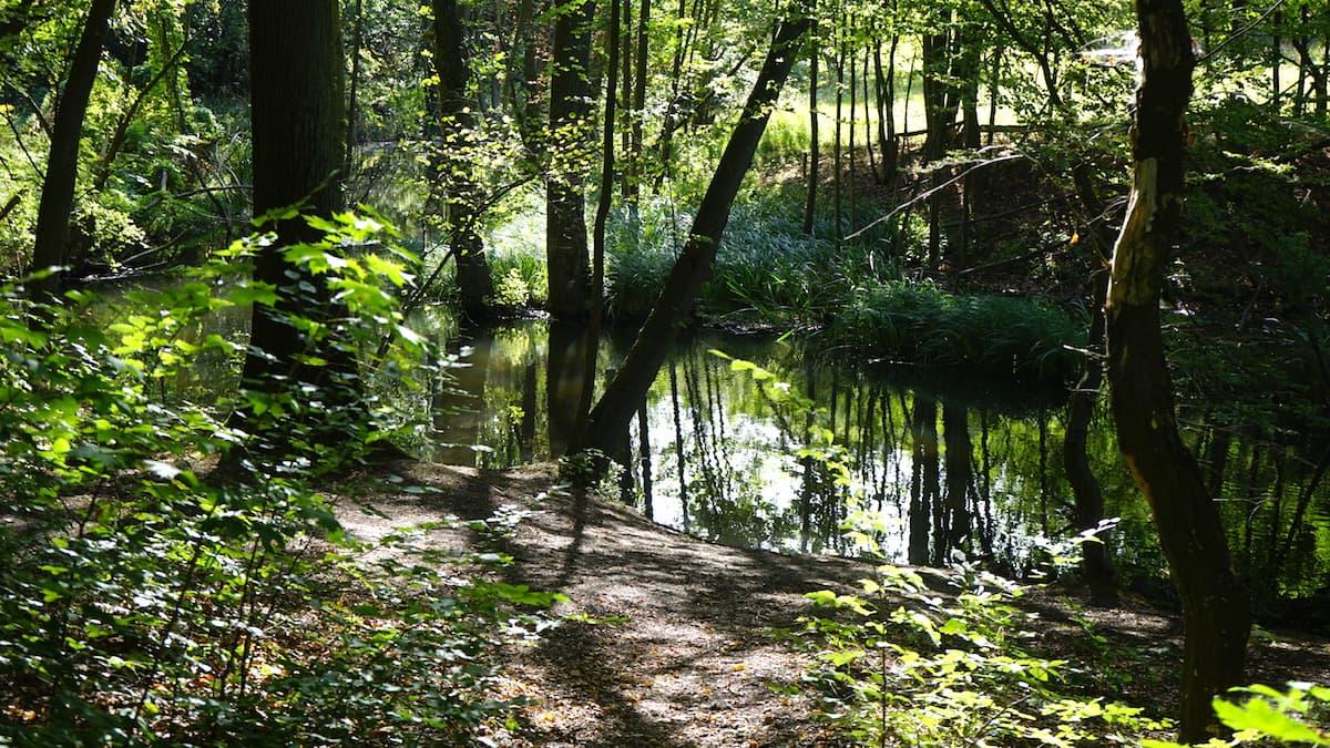 Seenland Oder-Spree, Märkische Schweiz, Stobber, Stöbber. Foto: Beate Ziehres