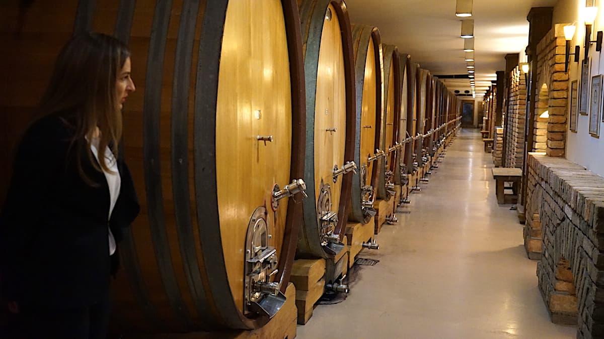 Weinkeller des Weinguts Aleksandrovic in Serbien. Foto: Beate Ziehres