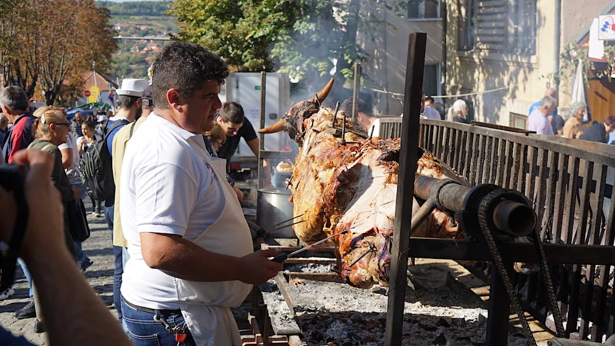 Serbische Küche: Ochse am Spieß auf dem Topola Weinfestival, Serbien. Foto: Beate Ziehres
