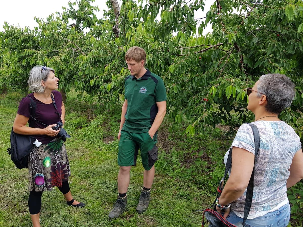Stendal, Scheunenladen Stallbaum: AltmarkBlogger-Besuch auf der Kirschplantage – Foto: Björn Gäde