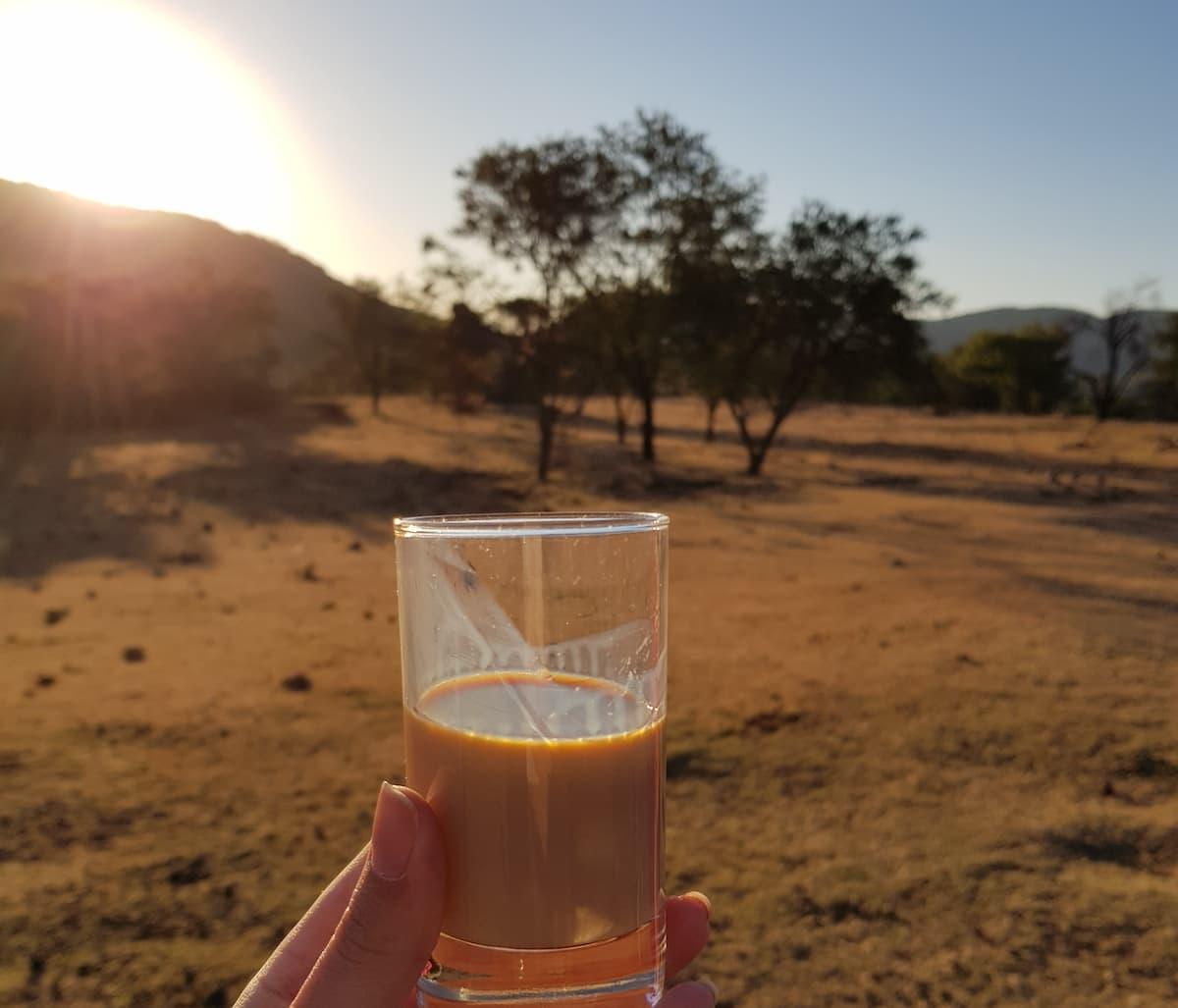 Safari in Südafrika, ChaZen privates Wildreservat: Amarula als Sundowner. Foto: Lena Ziehres