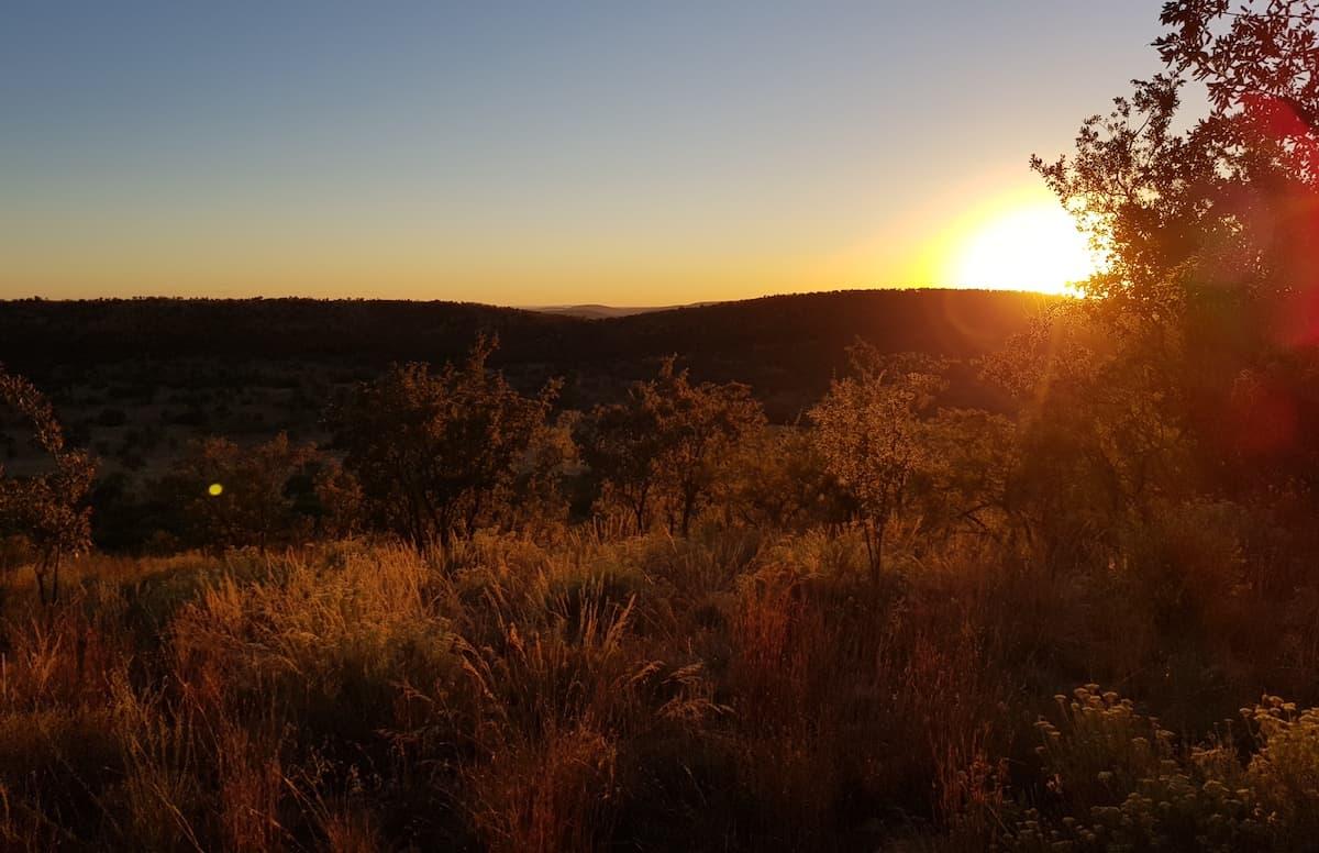 Safari in Südafrika, ChaZen privates Wildreservat: Sonnenuntergang. Foto: Lena Ziehres
