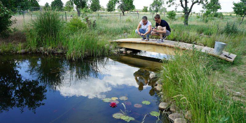 Tangerhütte, Cobbel. Landgenuss am Teich. Foto: Beate Ziehres