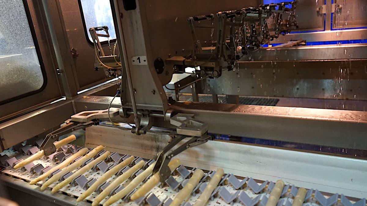 Tangerhütte, Schelldorf: Spargelschälmaschine bei Garlipp. Foto: Beate Ziehres