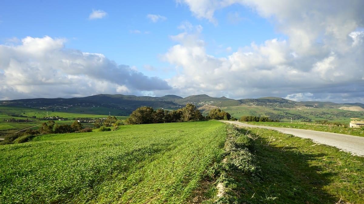 Urlaub: Grüne Landschaft im Norden Tunesiens. Foto: Beate Ziehres