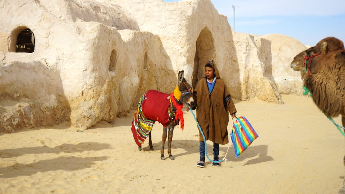 Tunesien, Star Wars Drehorte: Esel, Kamele und Jungs im original Berbermantel beleben die Szene am Star Wars Filmset Mos Espa heute.