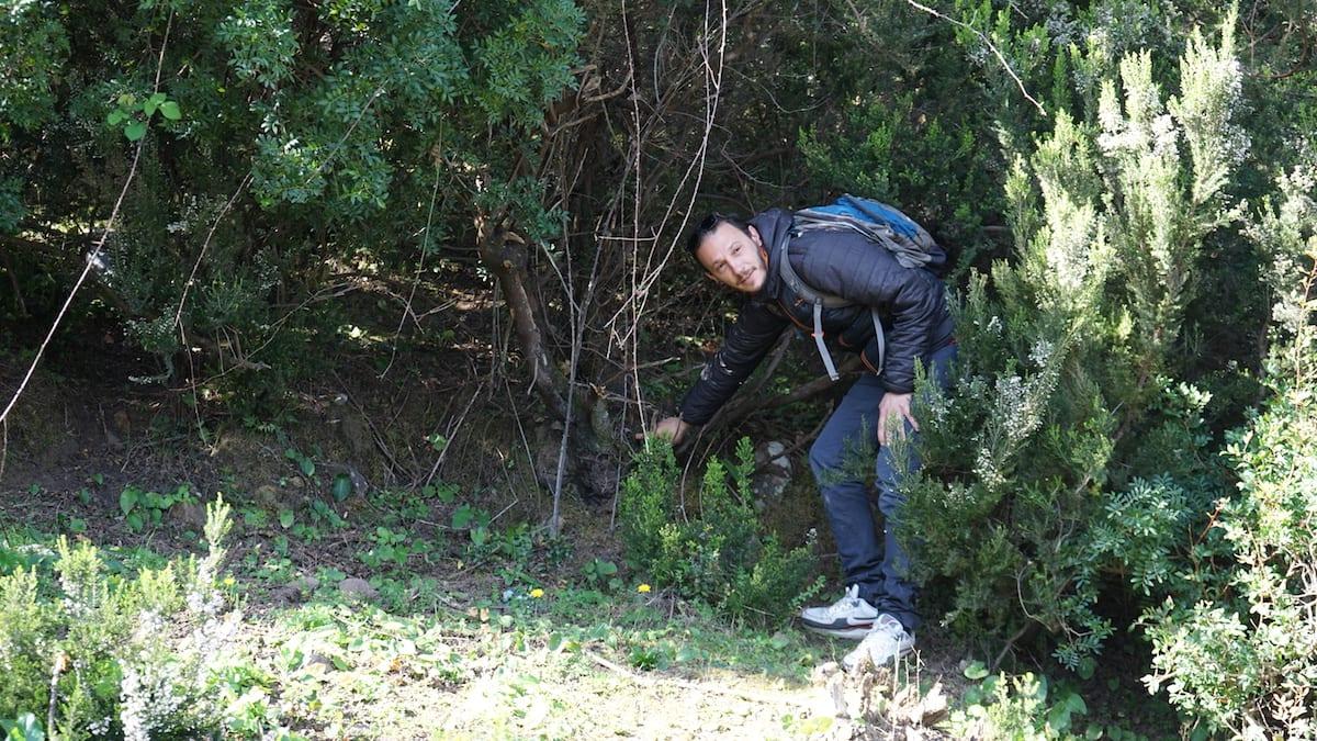 Pfeifenbauer Anis Bouchnak zeigt die Wurzeln der Heide, aus der er Pfeifen herstellt. Foto: Beate Ziehres