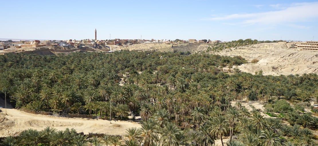 """Tunesien Urlaub – Der Palmenhain """"La Corbeille"""" in Nefta im Süden Tunesiens. Foto: Beate Ziehres"""