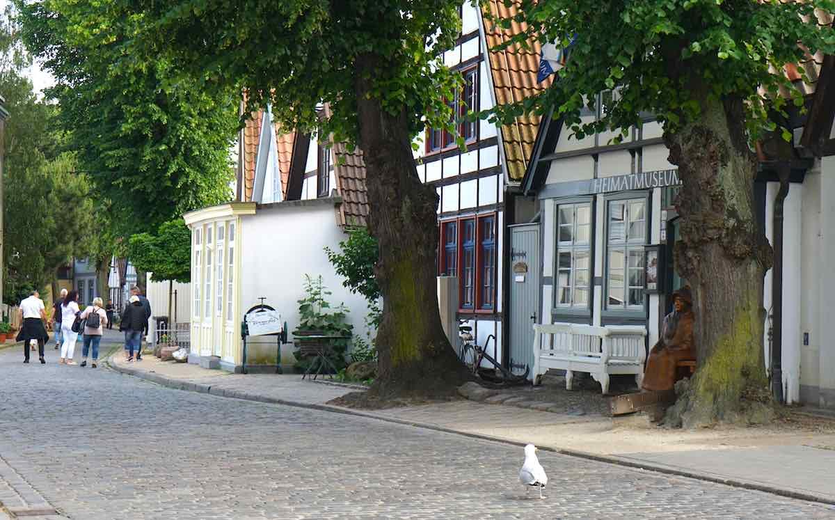 Auch vor dem Heimatmuseum darf die obligatorische Möwe nicht fehlen – Foto: Beate Ziehres