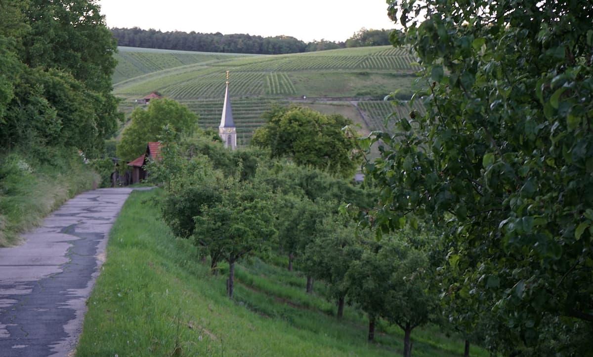 Streuobstwiesen in Beckstein. Foto: Beate Ziehres