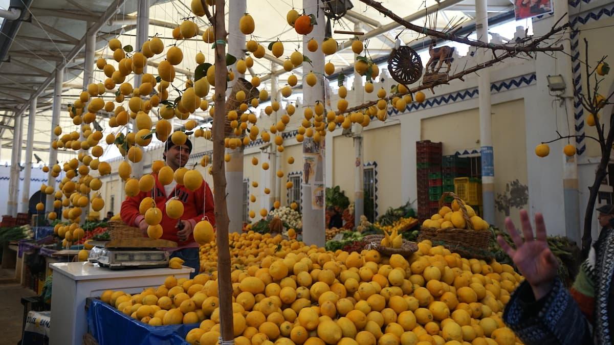 Essen in Tunesien: Zitronen-Händler in Tunis